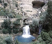 Afqa, source of the Adonis River